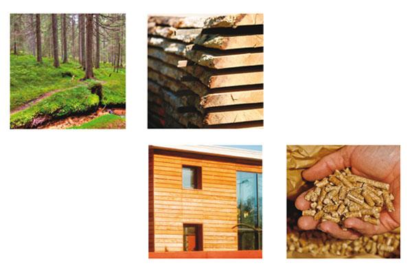 Support pour professionnels de la filière bois