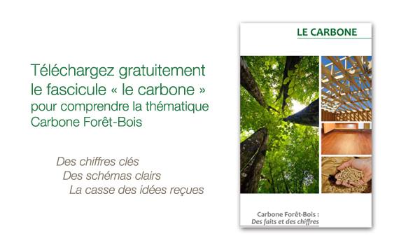 Fasicule carbone forêt bois