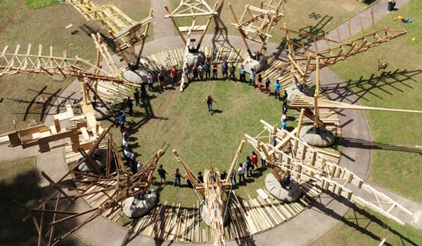 Les défis du bois d'Epinal