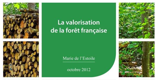 Potentiel de la forêt française
