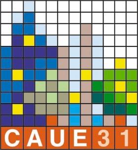 CAUE 31